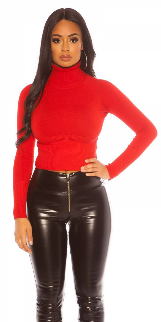 Sexy Cropped Turtleneck...