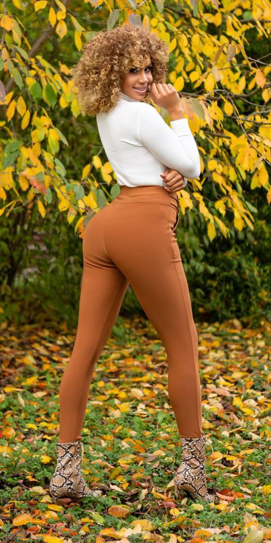 Sexy Fitting Highwaist Pants